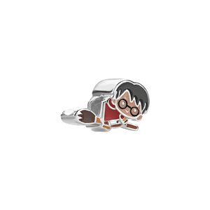 Harry_Potter_charm_prata_18